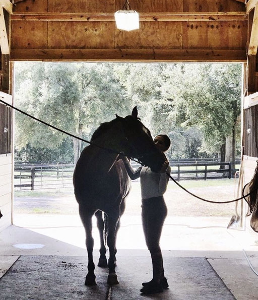 Waters Edge Stables, Professional equestrian facility, hunter/jumper specialty, full-service barn & facilities, horse boarding, riding lessons, horse shows, Grand Champions