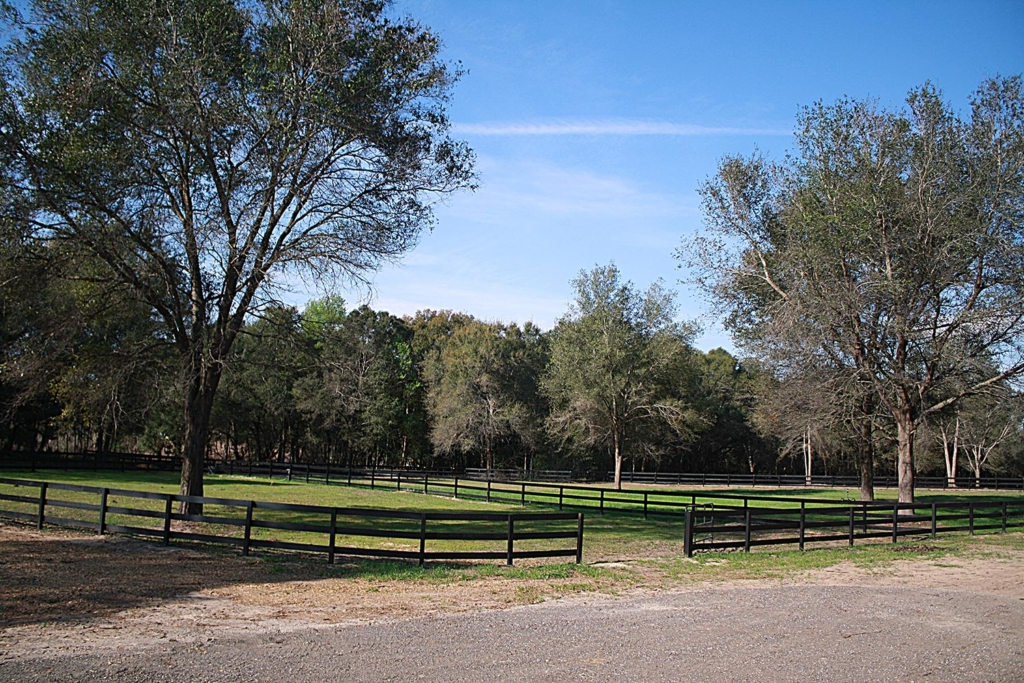 Waters Edge Stables, Professional equestrian facility, hunter/jumper specialty, full-service barn & facilities, horse boarding, riding lessons, horse shows, lush paddocks