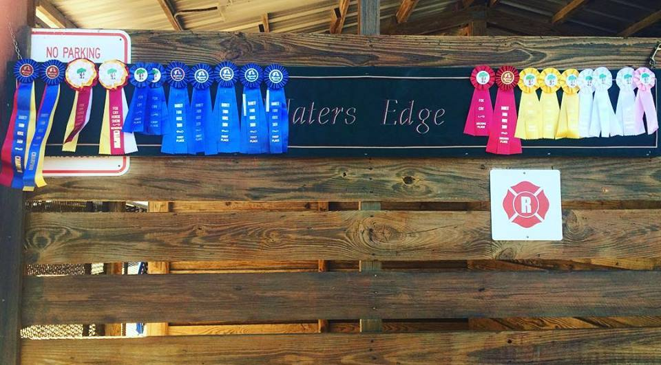 Waters Edge Stables, Professional equestrian facility, hunter/jumper specialty, full-service barn & facilities, horse boarding, riding lessons, horse shows