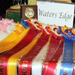 Waters Edge Stables, Professional equestrian facility, hunter/jumper specialty, full-service barn & facilities, horse boarding, riding lessons, horse shows, ribbons