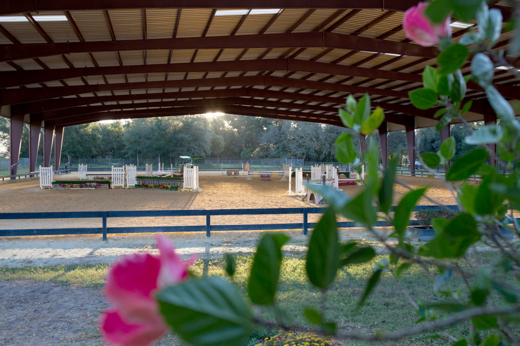Waters Edge Stables, Professional equestrian facility, hunter/jumper specialty, full-service barn & facilities, horse boarding, riding lessons, horse shows, boarding facilities