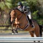 Waters Edge Stables, Professional equestrian facility, hunter/jumper specialty, full-service barn & facilities, horse boarding, riding lessons, horse shows, Jessica Cross, Assistant Trainer, Barn Manager, Waddy Ourlser, Lessons, Pony